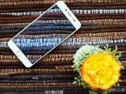 Dế sắp ra lò - Lộ ảnh chính thức của Vivo X7