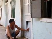 Tin tức trong ngày - Lạ lùng chuyện xây nhà trọ để… nuôi gà ở Nghệ An