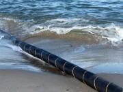 Công nghệ thông tin - Cáp quang biển bảo trì hoàn tất, Internet trở lại bình thường