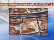 Video An ninh - Cảnh báo lừa đảo trong giao dịch nhập thịt từ Brazil