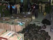 An ninh Xã hội - Cảnh sát nổ súng, truy đuổi ô tô chở hơn 100 con tê tê