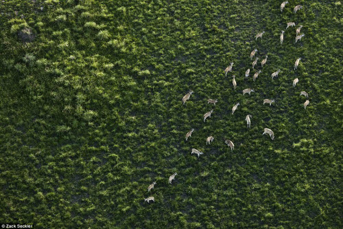 """""""Ngất lịm"""" trước cảnh đẹp hoang dã ở Nam Phi - 2"""