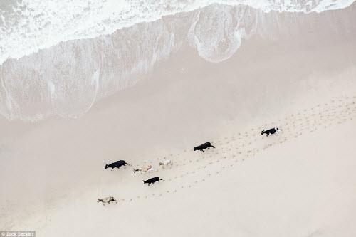 """""""Ngất lịm"""" trước cảnh đẹp hoang dã ở Nam Phi - 3"""