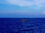 """Tin tức trong ngày - Săn cá """"sát thủ"""" trên vịnh Triều Dương"""
