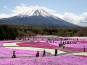 """Du lịch - """"Bỏ túi"""" ngay 34 địa điểm đẹp quên lối về ở Nhật Bản"""