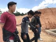 An ninh Xã hội - Bắt hai thanh niên cắt trộm cáp ngầm