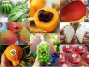 """Thị trường - Tiêu dùng - Ưa trái cây Nhật """"sang chảnh"""": Người Việt mạnh tay chi tiền triệu"""