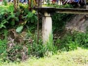 Tin tức trong ngày - Phát hiện thi thể người đàn ông nằm ngửa dưới mương nước