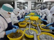 Thị trường - Tiêu dùng - Hàng Trung Quốc 'ăn ốc', hàng Việt 'đổ vỏ'