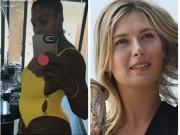 """"""" Chân dài """"  tennis: Serena có bầu, thời cơ vàng cho Sharapova"""