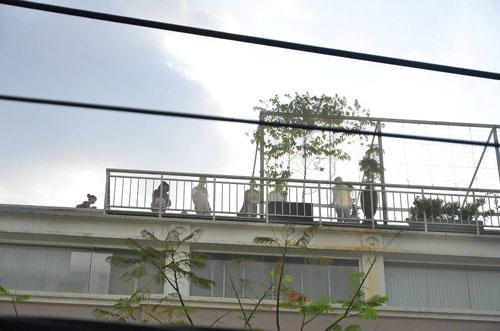 Xe thang giải cứu 11 người gào khóc trong đám cháy ở SG - ảnh 2