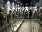 Lạnh gáy bên trong bảo tàng xác ướp tại Mexico