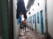 An ninh Xã hội - Cụ ông bán vé số chết bất thường trong phòng trọ
