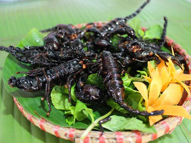 Những loài côn trùng ngon bổ hấp dẫn thực khách trên bàn nhậu