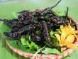 Những loài côn trùng ngon, bổ hấp dẫn thực khách trên bàn nhậu