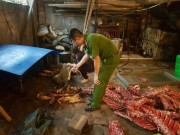 Hà Nội: Buộc tiêu hủy hơn 2.000 kg thực phẩm  bẩn