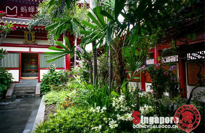 Choáng ngợp ngôi chùa 75 triệu USD lộng lẫy giữa quốc đảo Singapore-11