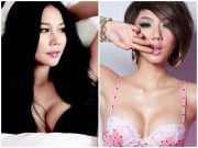 Đời sống Showbiz - Loạt sao Việt thẳng thừng từ chối quà tặng nhà, xe tiền tỷ từ fans