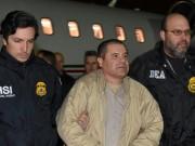 Thế giới - Mexico: Không ai thu nổi 1 xu từ trùm ma túy Chuột chũi