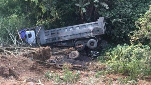 Xe tải rơi vực sau khi đâm trâu nghé chết la liệt trên đường - 2