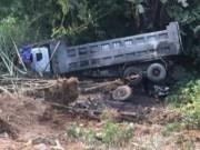 Tin tức trong ngày - Xe tải rơi vực sau khi đâm trâu nghé chết la liệt trên đường