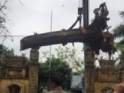 Tin tức trong ngày - Đại gia gỗ Đồng Kỵ tiết lộ sốc vụ mua cây sưa 200 tuổi ở Đông Cốc