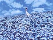 """Du lịch - Bộ ảnh chứng minh Nhật bản là """"thiên đường"""" cho các thanh niên sống ảo"""