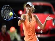 Sharapova nguy cơ lỡ Roland Garros  & amp; Wimbledon: Hoa hậu bị vùi dập