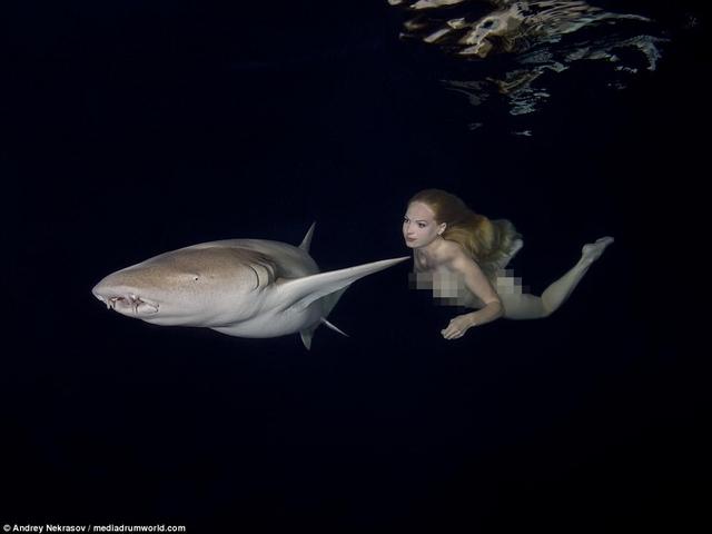Khỏa thân ung dung bơi cạnh đàn cá mập chết người - 3
