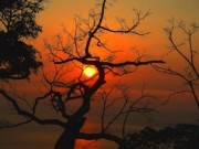 Du lịch - Sơn Trà đẹp ngỡ ngàng trong khoảnh khắc giao mùa