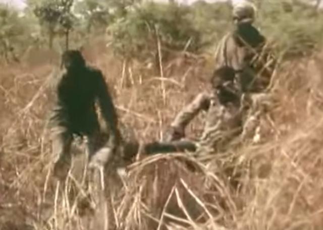 Dùng người làm mồi câu trăn khổng lồ 6 mét ở châu Phi - 2