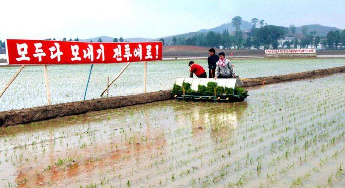 """Triều Tiên thề vượt qua """"100 nạn đói"""" bất chấp cấm vận - 2"""