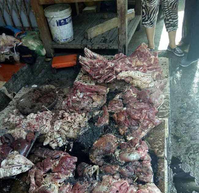 Chủ sạp thịt lợn xin giảm tội cho 2 phụ nữ hắt dầu luyn - 2