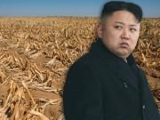"""Thế giới - Triều Tiên thề vượt qua """"100 nạn đói"""" bất chấp cấm vận"""