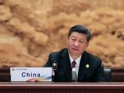 Chủ tịch TQ nói thế giới phải đoàn kết như  đàn ngỗng