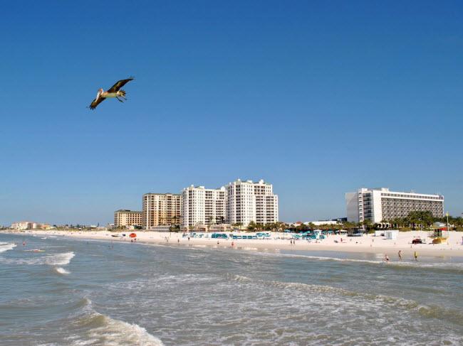 Clearwater Beach, bang Florida: Nước ở đây ấm và sạch, trong khi thị trấn ven biển cũng rất thân thiện với công viên hải dương, nhiều nhà hàng và các hoạt động trước biển.