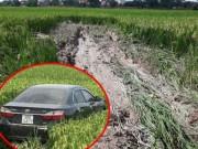 Tin tức trong ngày - Nóng 12h qua: Tài xế xe Camry khai nguyên nhân tông 3 HS tử vong