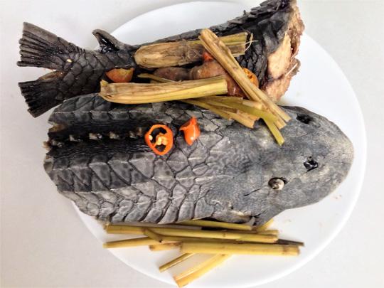 Cá lau kính hấp sả, món khoái khẩu của dân nhậu 1