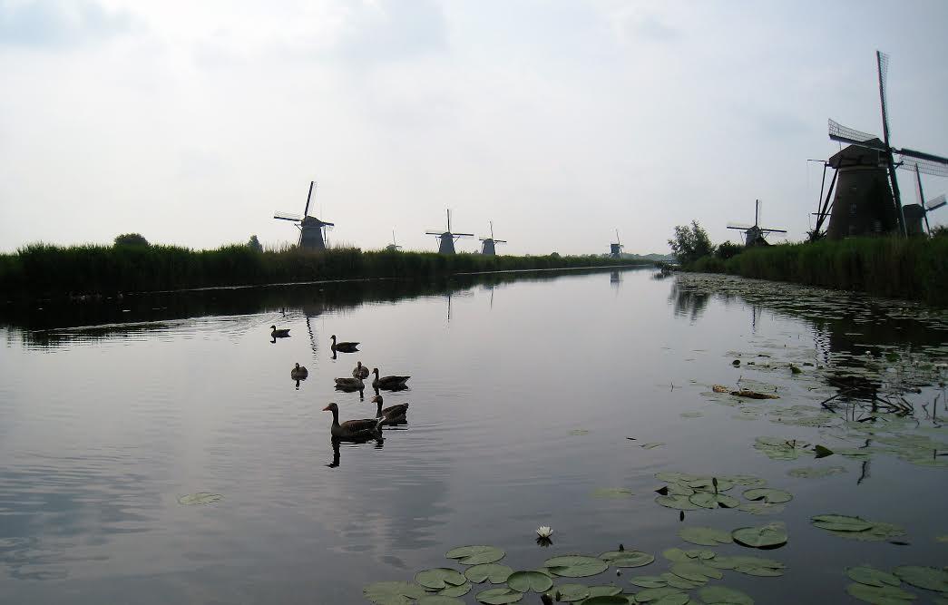 """""""Bí mật"""" ít người biết về cối xay gió - biểu tượng của người Hà Lan - 2"""