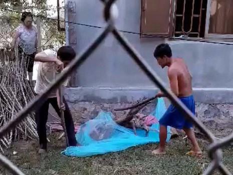 Bắt sống hổ mang chúa gần 2m lạc vào nhà dân - 1