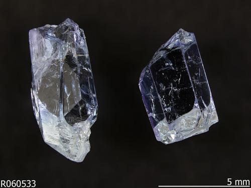 Không ngờ những thứ này còn đắt hơn cả kim cương - ảnh 1