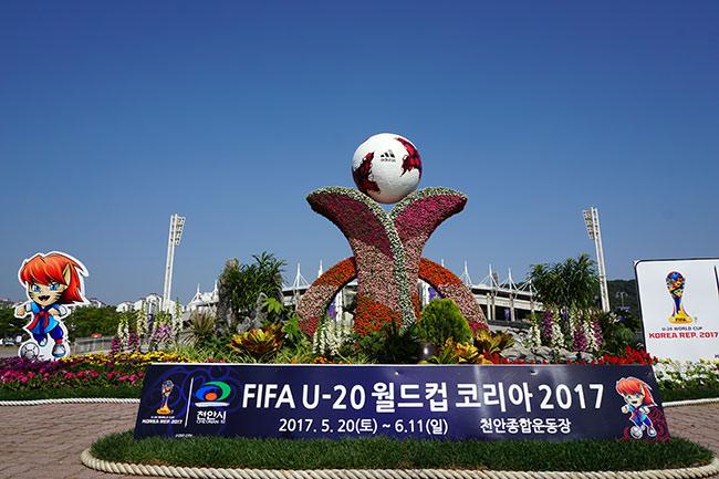 Fan nữ Hàn Quốc kéo cả trăm anh em cổ vũ U20 Việt Nam - 1