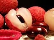 Sức khỏe đời sống - Quả vải trị chứng đái dầm ở trẻ nhỏ