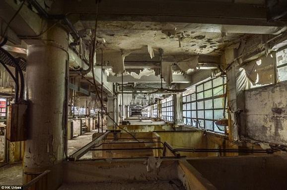 """""""Khu chợ ma"""" hoang tàn ở thành phố đắt đỏ nhất thế giới - 8"""