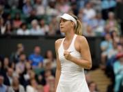 """Thể thao - Sharapova mơ """"cổ tích"""" Wimbledon 2017: Lửa thử vàng"""