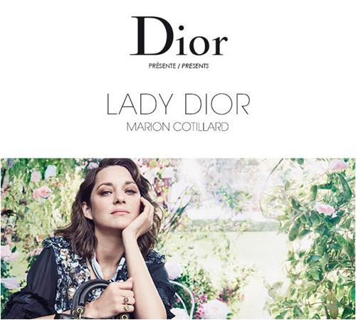Người tình tin đồn của Brad Pitt bị Dior sa thải vì già và mập? - 4