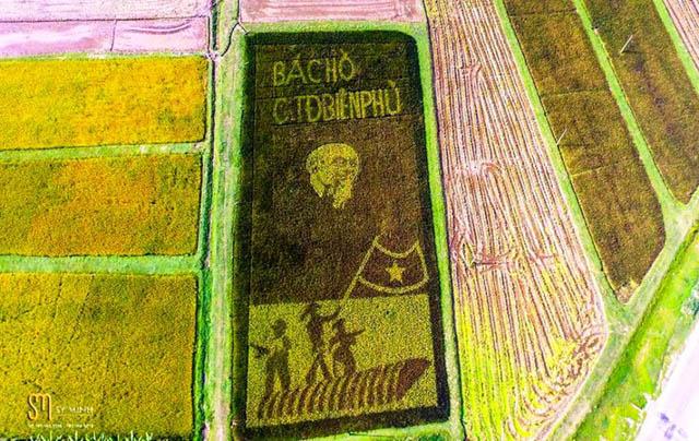 Độc đáo tranh Bác Hồ hiện ra trên cánh đồng khi lúa chín - 1