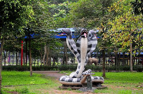 """Khu vườn toàn """"quái thú"""" độc, lạ và dị nhất Việt Nam - 9"""