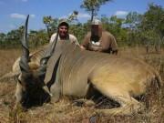 Thế giới - Thợ săn huyền thoại châu Phi bị voi tung lên rồi đè chết