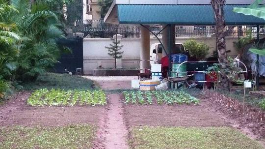 """""""Khu vườn bí mật"""" trong Đại sứ quán Pháp ở Hà Nội - 10"""
